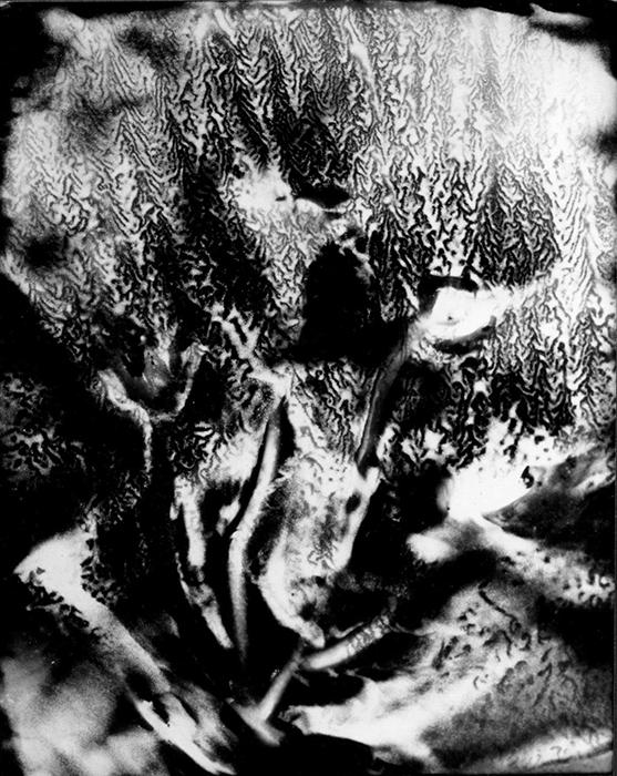 01_Genèse II,n°2-2000