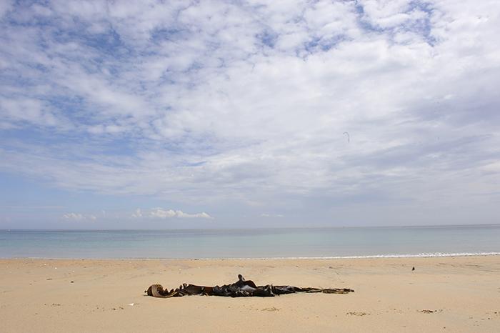 09_île d'yeu©vwinckler.2011