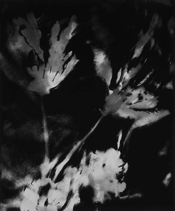 03_Genèse II,n°3-2000